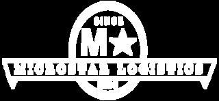 Microstar Logistics logo